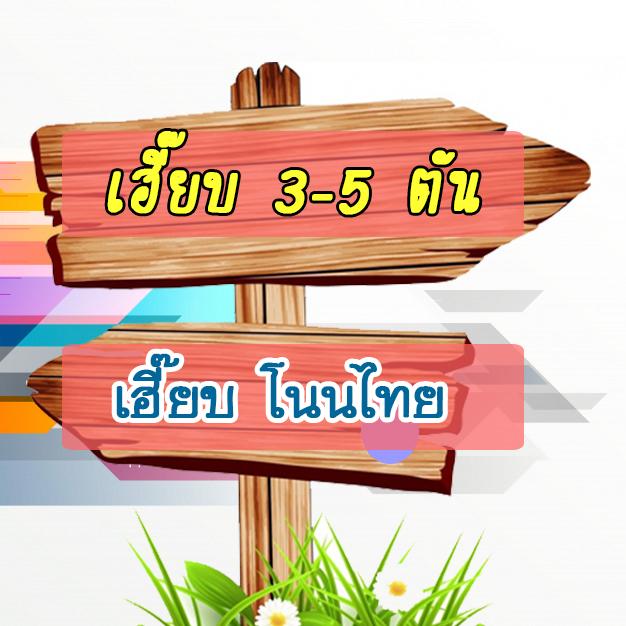 โนนไทย